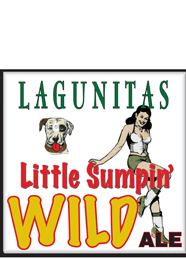 Lagunitas A Little Something Wild